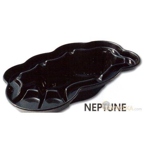 Neptun V