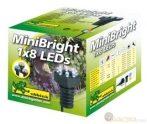 Világítás MiniBright 1x8 LED