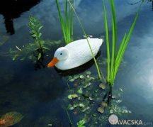 Állatfigura fehér kacsa