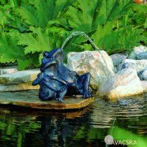 Vízköpő Béka (2)