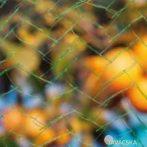 Növény/gyümölcs védőháló 10x2