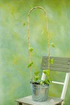 Bambusznád hajlított natúr H60