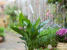 Virágtámasz, műanyaggal bevont fémből zöld színben 90