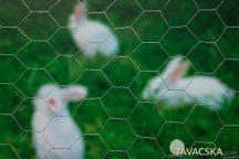 Hexagal galvanizált drótkerítés 13x13 0,5x5