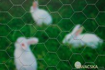 Hexagal galvanizált drótkerítés 25x25 1x10